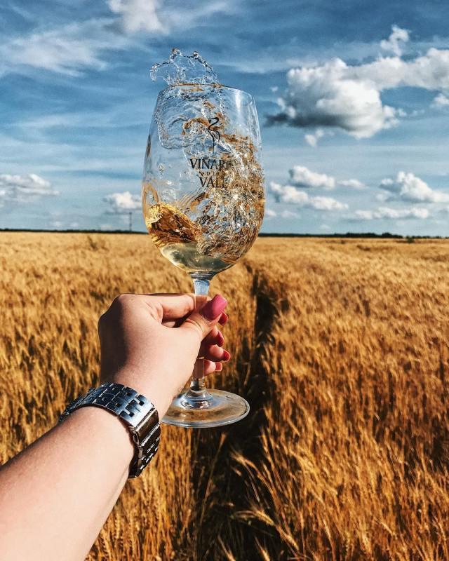 foto creativ wine