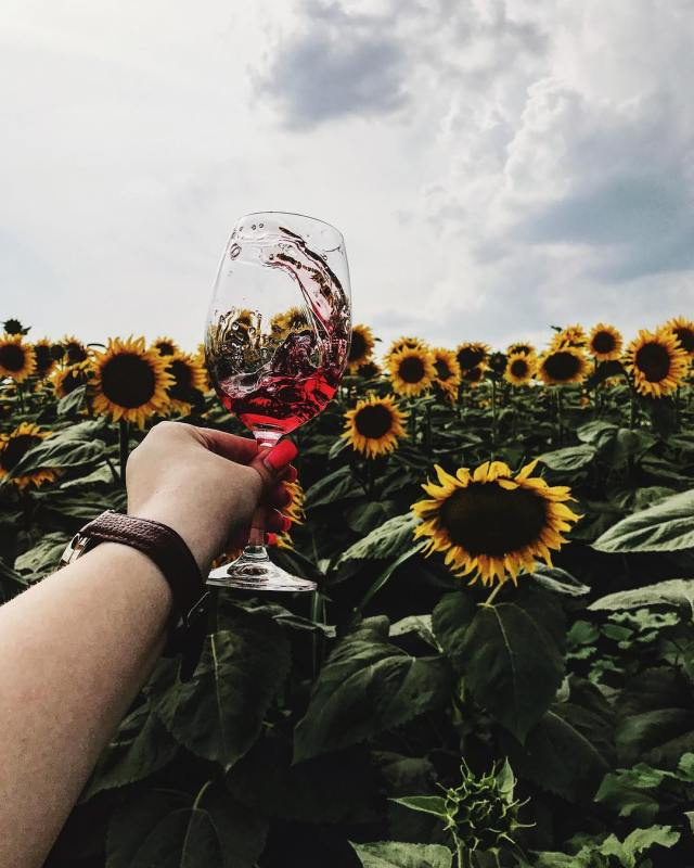 foto pahar de vin creativ